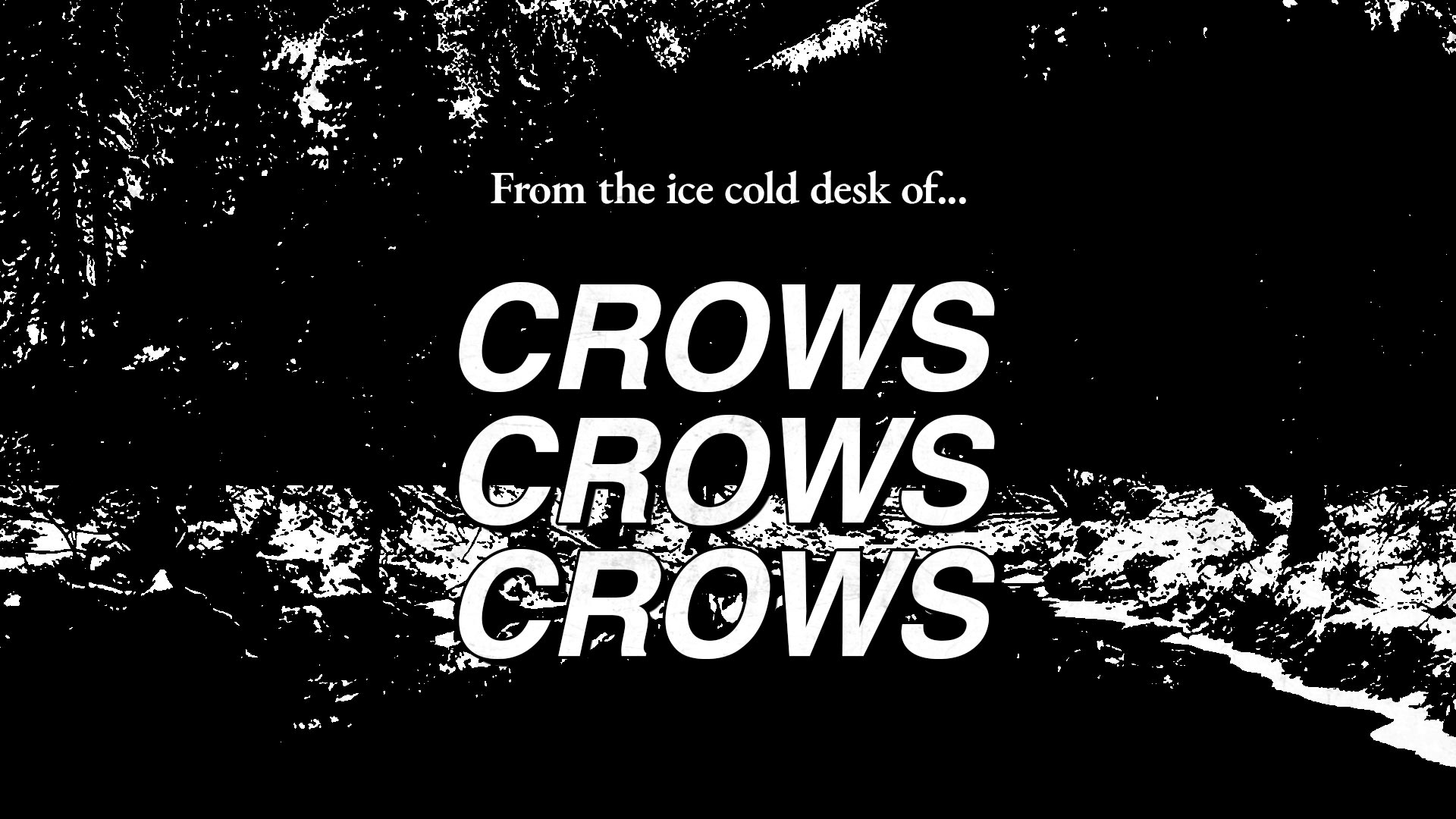 From the ice cold desk of Crows Crows Crows